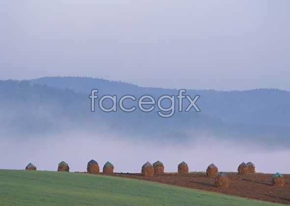 Idyllic village 201