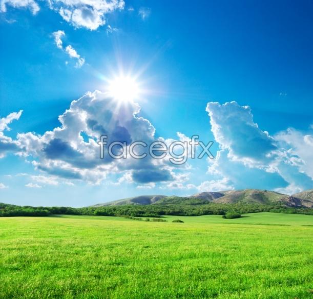 Lovely grassland landscape picture