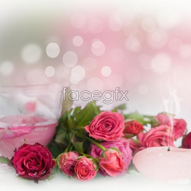 Splendid roses picture