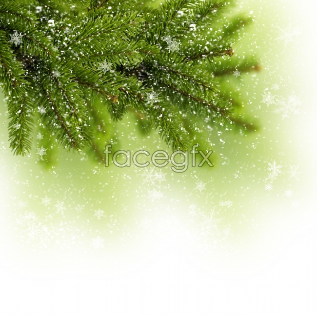 Dream green Christmas trees background pictures