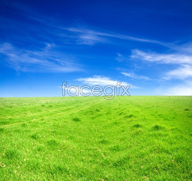 HD Grand grassland pictures