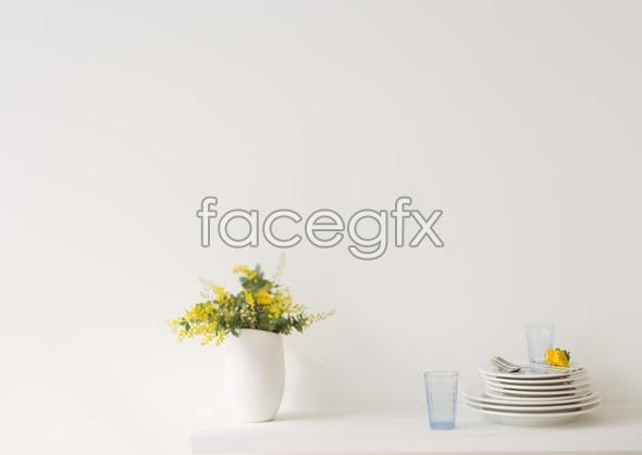 Indoor flower 31