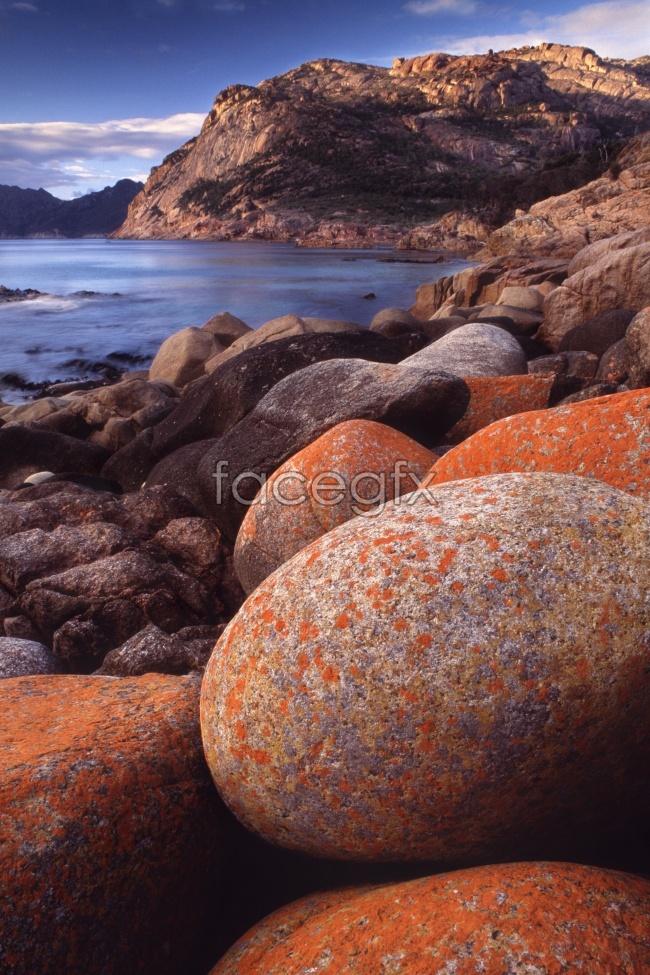 Seaside rock picture