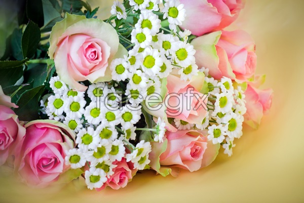 HD bouquets of roses pictures