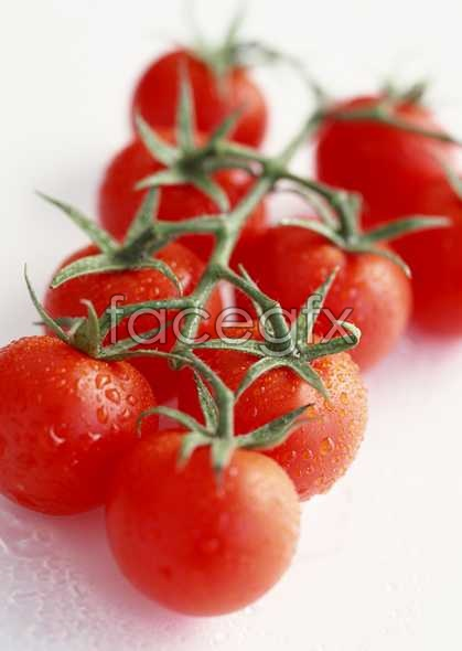 Fresh fruits and vegetables, 409