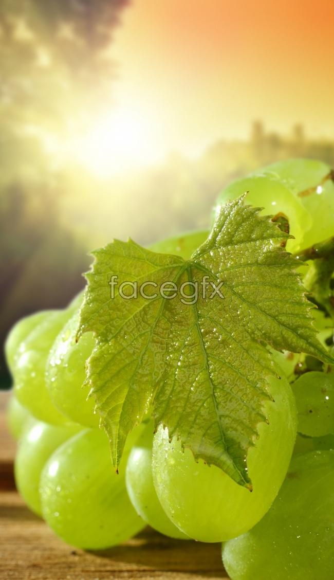 Green grape picture