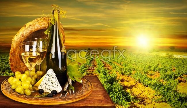 Idyllic wine pictures