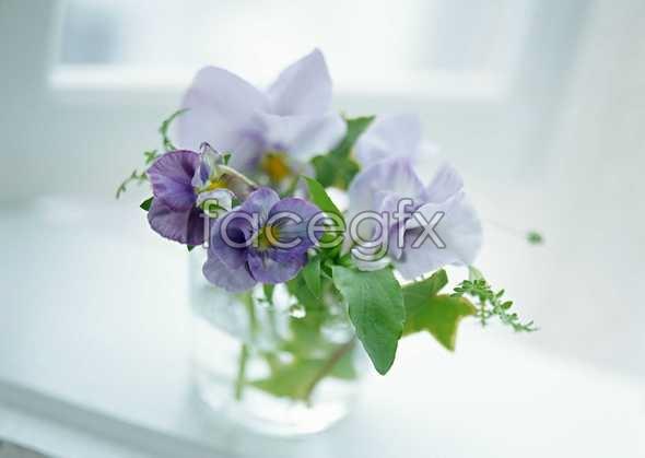 Bouquets of purple flower arrangement