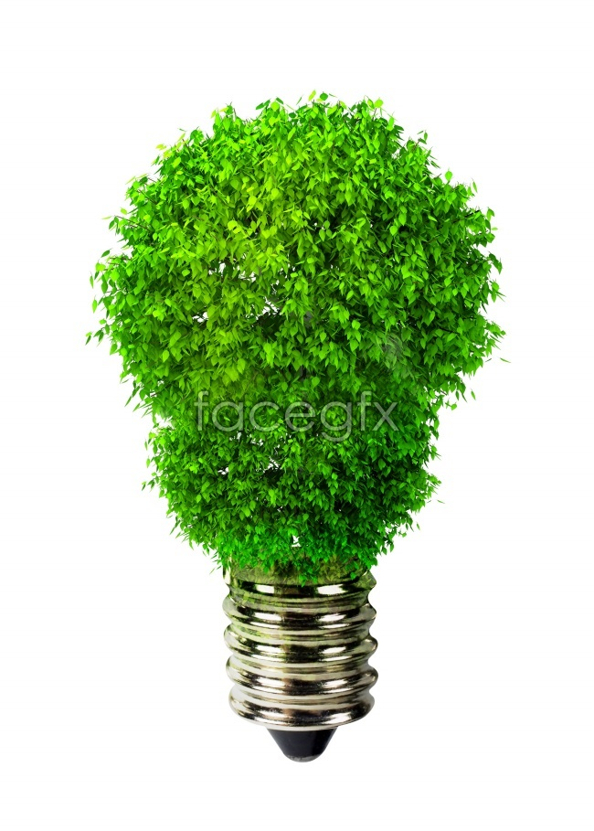 Bulb shape green pictures