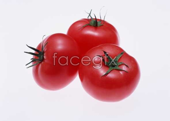 Fresh fruits and vegetables, 203