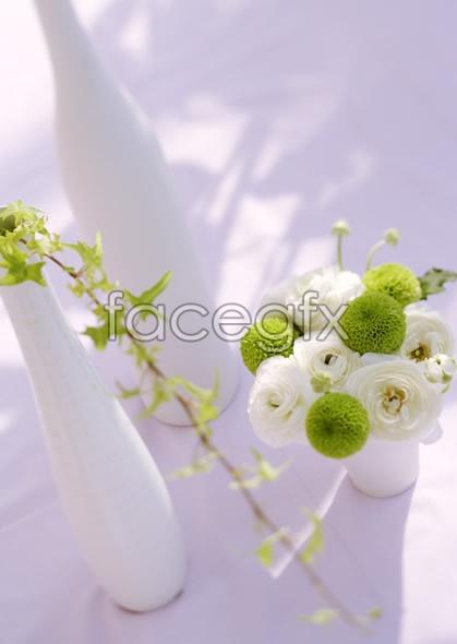Indoor flower 52