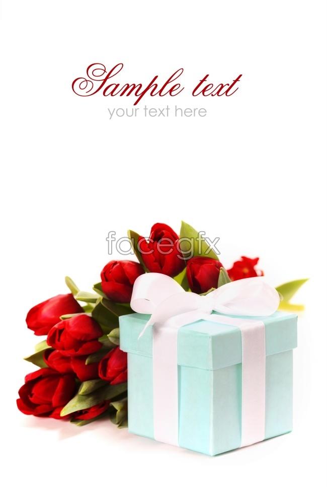 Exquisite tulip gift box pictures