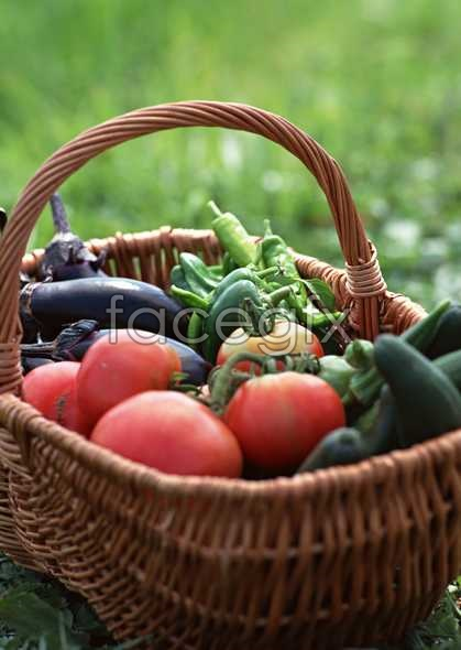 Fresh fruits and vegetables, 513