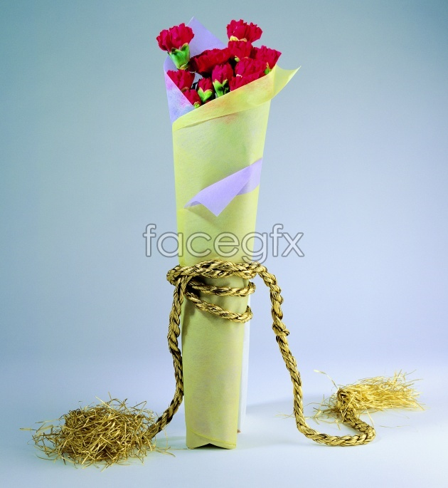 HD Carnation bouquet pictures
