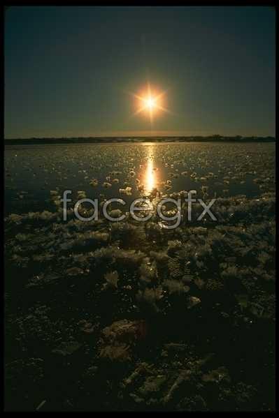 Ice 519