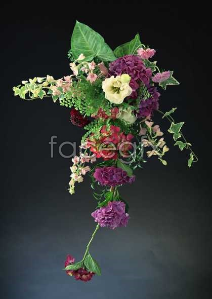 Flowers close-up 932