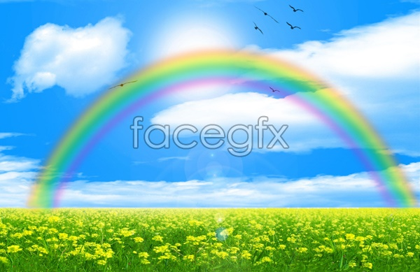 HD rainbow pictures