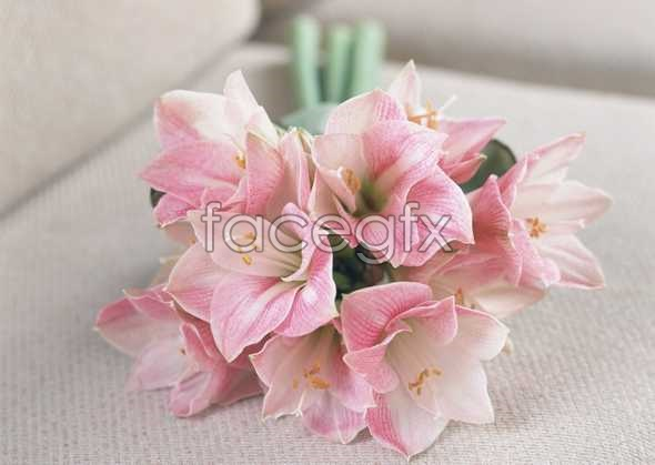 Thousand flower 405