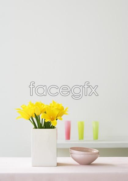 Indoor flower 39