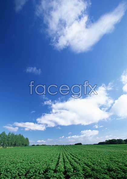 Open sky 377