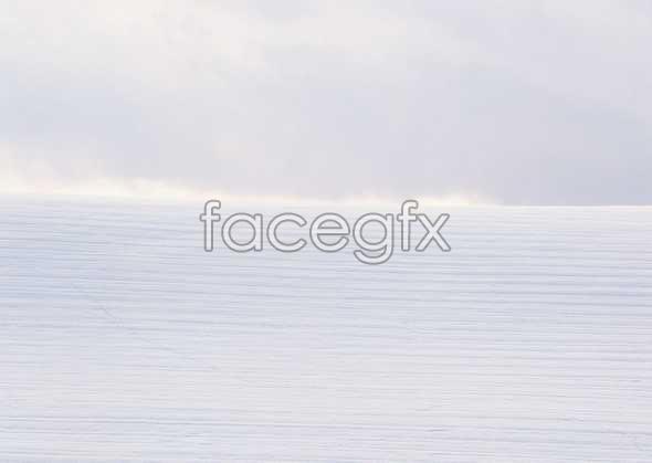 Frozen 274