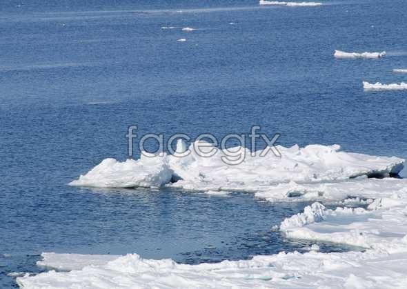 Ice 435