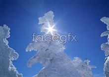Ice, 246