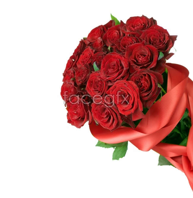 A bouquet of roses flowers pictures