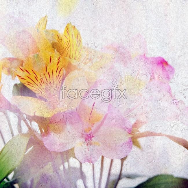 HD oil painting flowers
