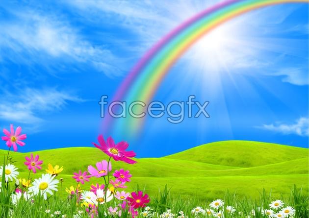HD  Rainbow flowers