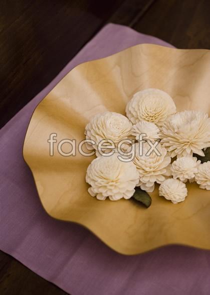 Indoor flower 123