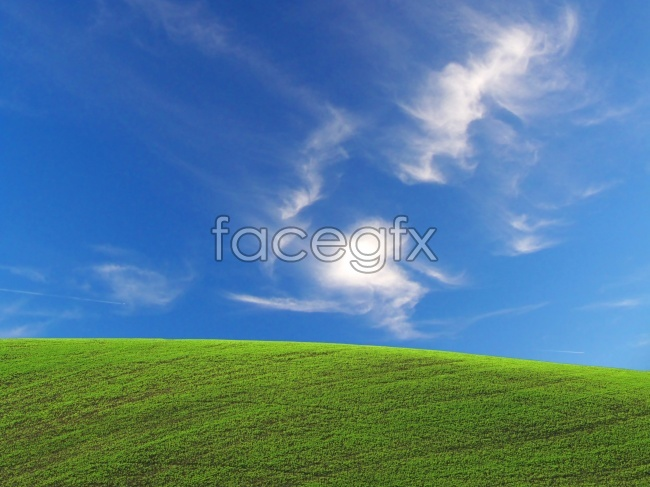 HD blue sky meadow pictures