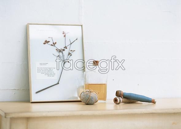 Indoor flower 142