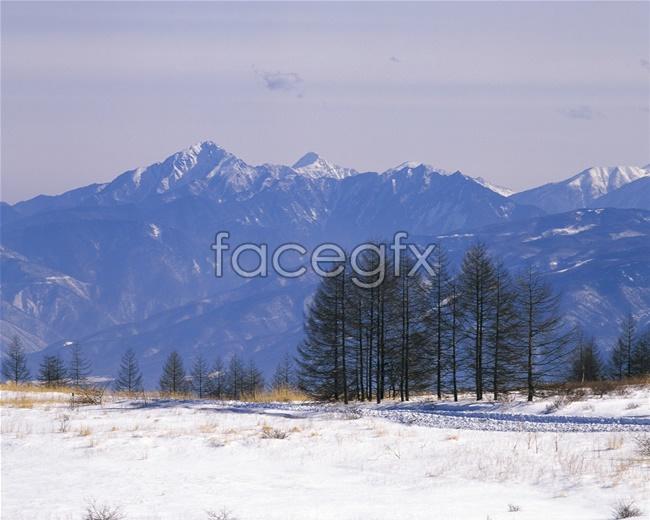 Japan snow photo