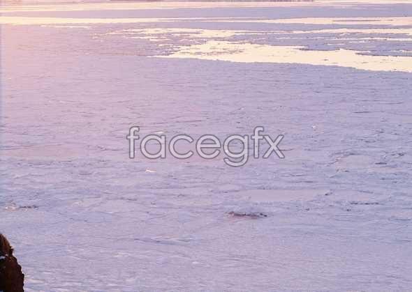 Ice 442