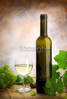Wine-estate picture