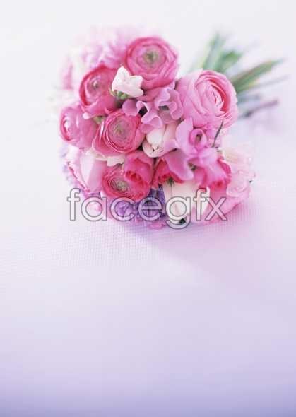 Flowers close-up 1758