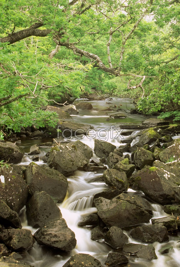 Mountain Creek landscape picture