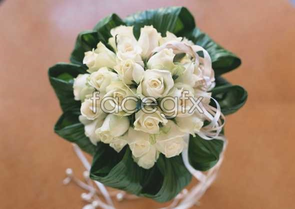 Thousand flower 319