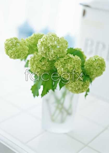 Floral green bouquet