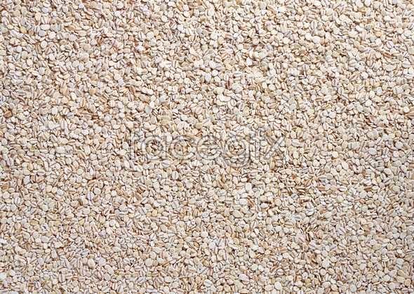 Grains 139