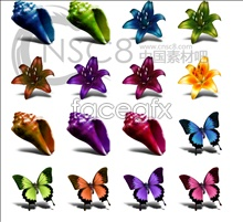 Shells Butterfly flower icon
