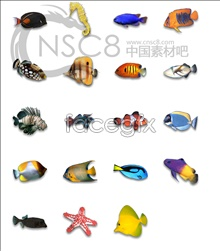 Tropical marine icons
