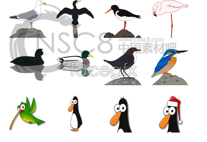 Cartoon birds icons