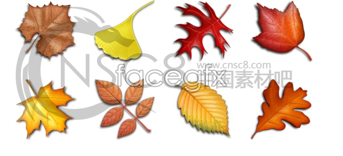Lacks the thick leaf litter sample icons