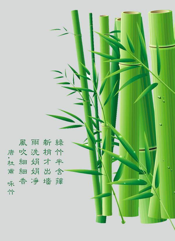 Bamboo bamboo design PSD