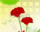 Background shading flowers PSD