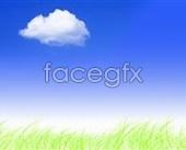 Grass blue sky background PSD