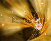 Amber fantasy flower backgrounds PSD