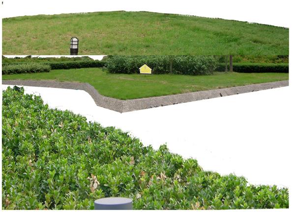 Garden grass  water PSD